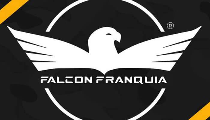 Franquia falcon armas