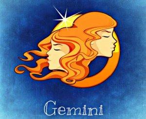 franquia ideal - signos- gemeos