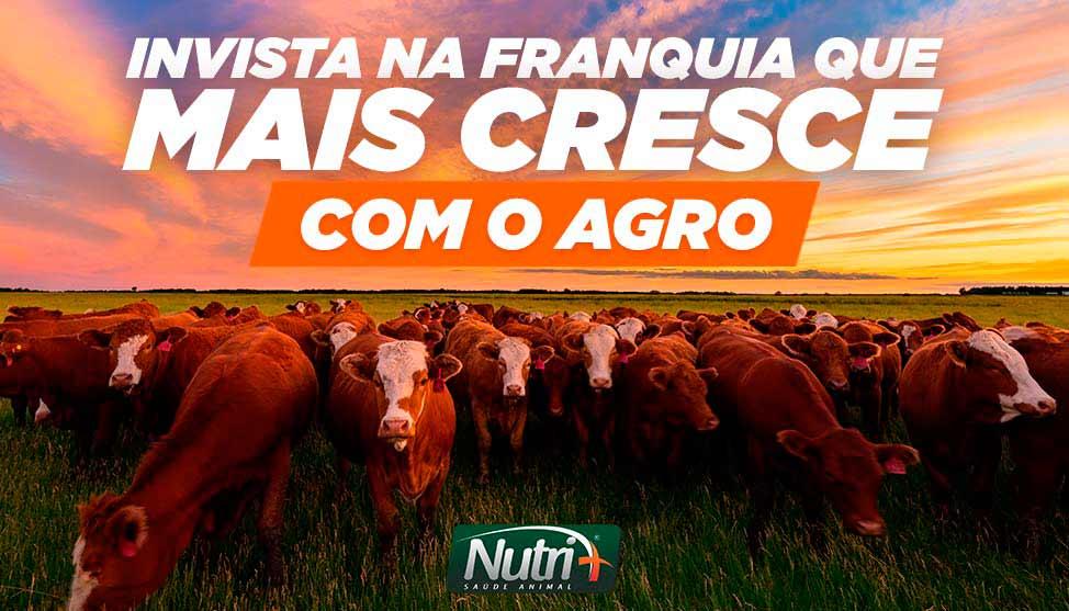 Faça parte da 1ª e maior rede de franquias do agronegócio do Brasil